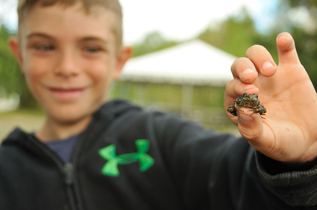 upgrade trail loop, Simon Lafrieniere, 10, shows off a frog he caught at Camp Bitobig in the Lake Laurentian Conservation Area