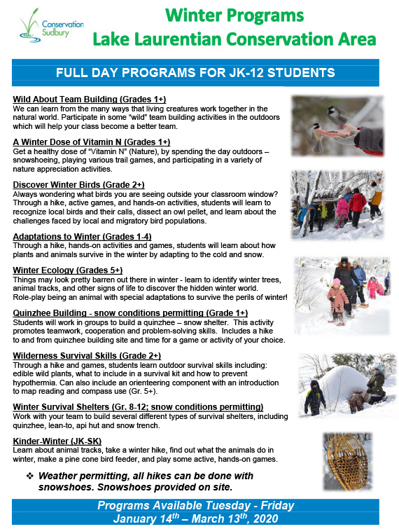 2020 elementary winter program flyer English